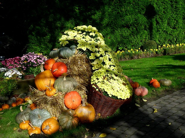 Decoración para eventos de otoño