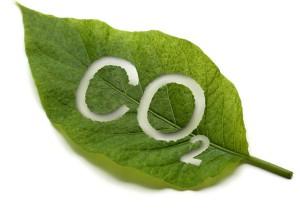 ¿Es la sede de tu evento eco-friendly?